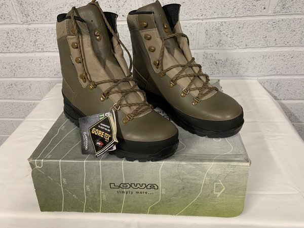 Lowa Mountain Boots GTX Brown